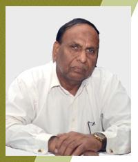 Hayat Muhammad Bhatti